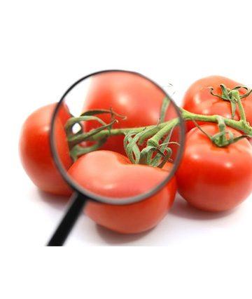 Sicurezza alimentare, 7° Appuntamento a Padova il 23-05-19