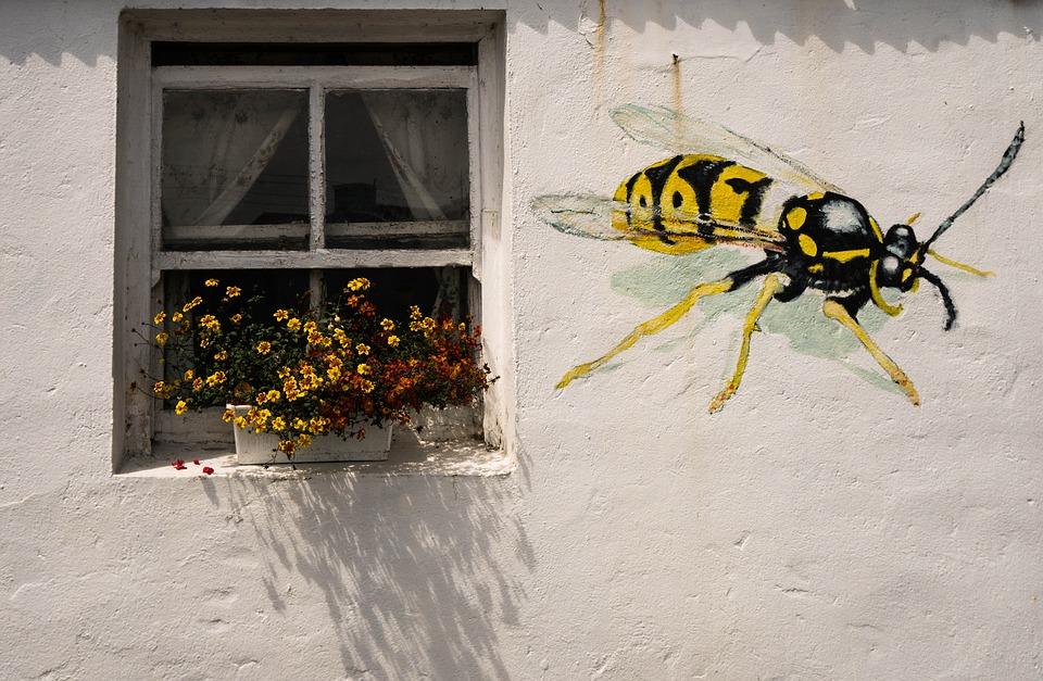 Quali sono gli insetti infestanti in casa blog for Formiche volanti in casa
